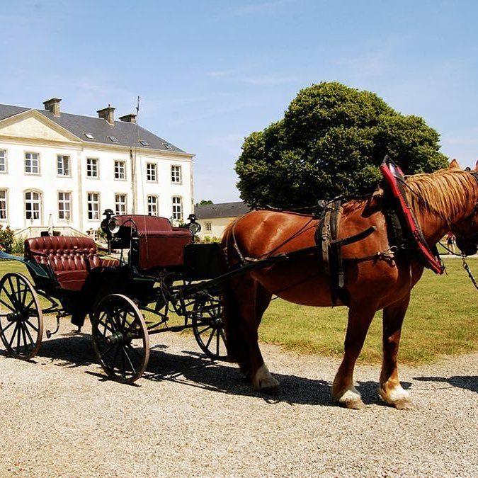 Promenades en calèche sur le domaine et autour du château de Quinéville